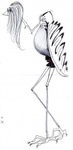donna condor